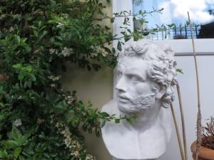 more garden 008